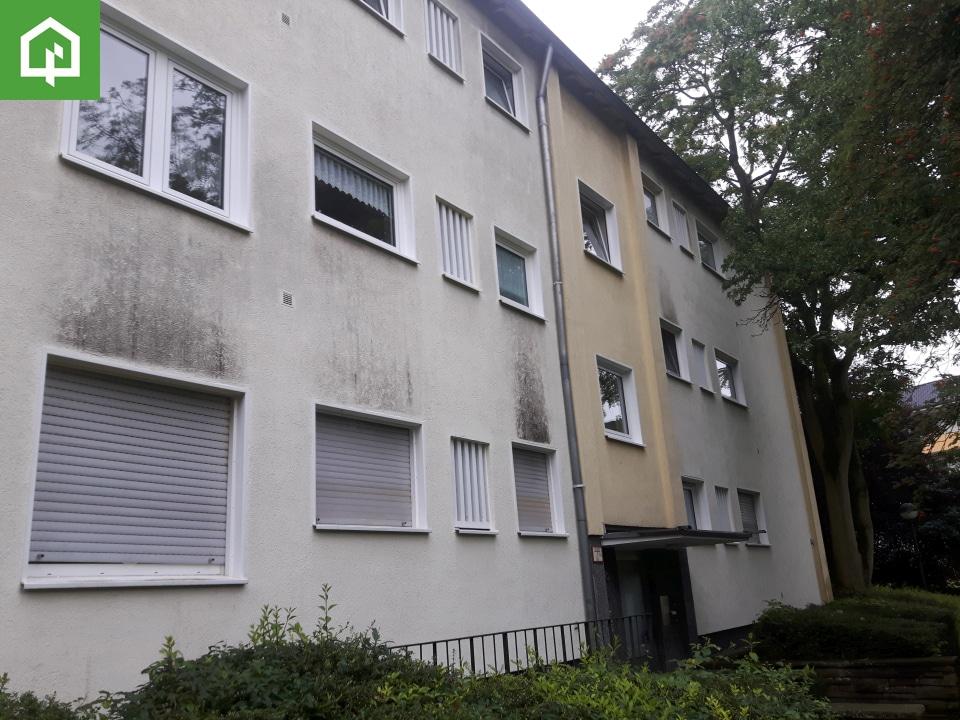 Bonn Verschmutzt